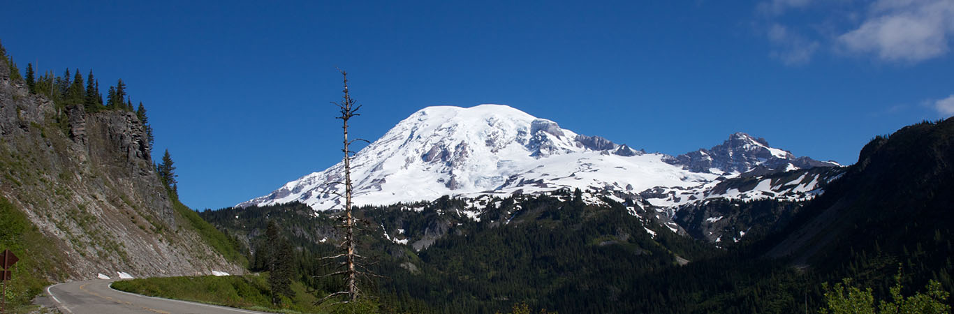 MT.RAINIER DASIGN